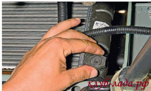 Отвернуть рукой пробку сливного отверстия радиатора